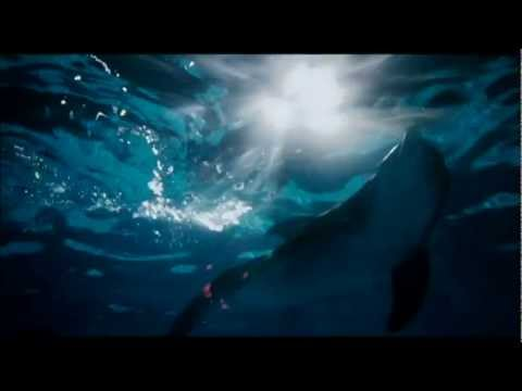 Dolphin Tale Movie Trailer – L'incredibile storia di Winter il Delfino WWW.GOODNEWS.WS