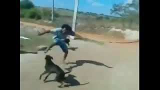 Slash vs Perros-  Power Rangers