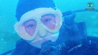 세계10대 다이빙 포인트 발리카삭에 가다~~2018[스쿠버다이빙/scubadiving/코브라다이브]