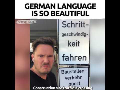 Google Translate German English Vietnamese Japanese Detected