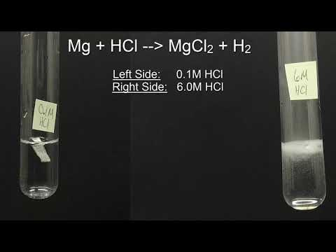 Magnesium Reacting With Different Concentrations Of Hydrochloric Acid