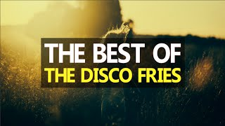 Best of The Disco Fries | 2015/2016 Mix