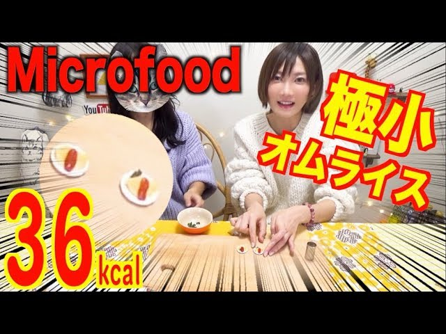【Micro-Food】 Cooking a Really Small Omelette Rice!!! [36kcal] [CC Available]