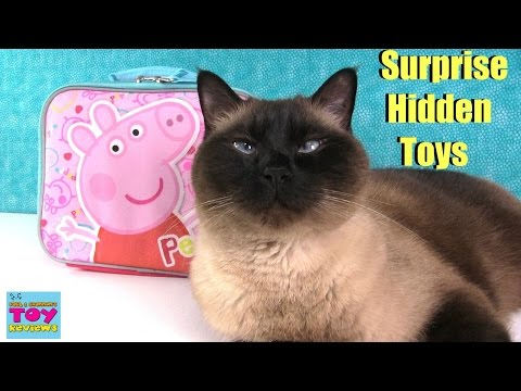 Thumbnail: Peppa Pig Surprise Lunchbox | Shopkins Squinkies Fashems MLP Opening | PSToyReviews