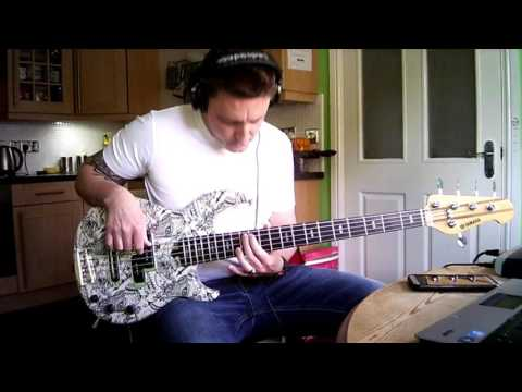 The Revivalists, Wish I Knew You, bass cover.