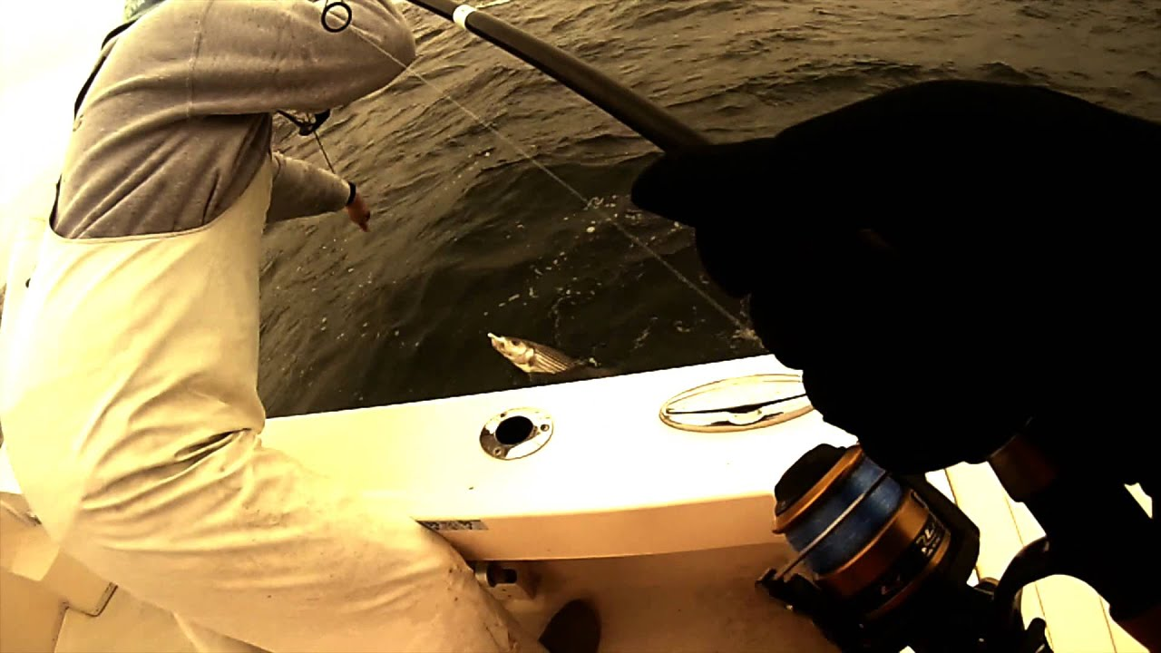 Cane Kit Stand Up 30-60lb Fishing Reel Mak Tuna Big Game drifting trolling