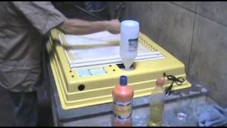 Limpeza e desinfecção das chocadeiras Premium Ecológica