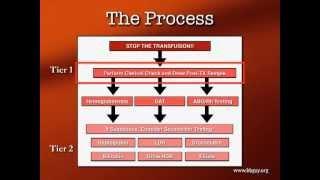 Transfusion Reactions Part 1