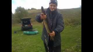 Рыбалка в Подмосковье на прудах