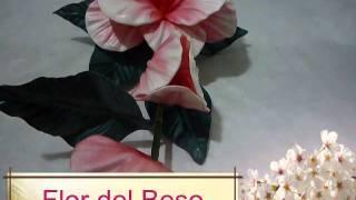 Curso de flores de Goma Eva 2