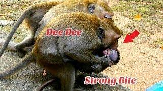 Gangster Dee Dee torturing baby Daniela nearly Die/ Pity baby Daniela
