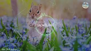 大自然的交響曲 優美的輕音樂 放鬆的旋律「睡眠用BGM」 ♪【SNOWFLAKES l Nostalgia】♪