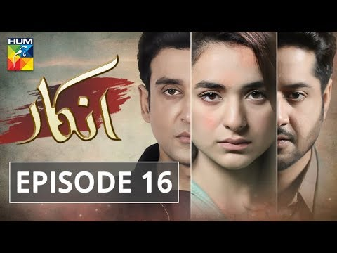 Inkaar Episode #16 HUM TV Drama 24 June 2019