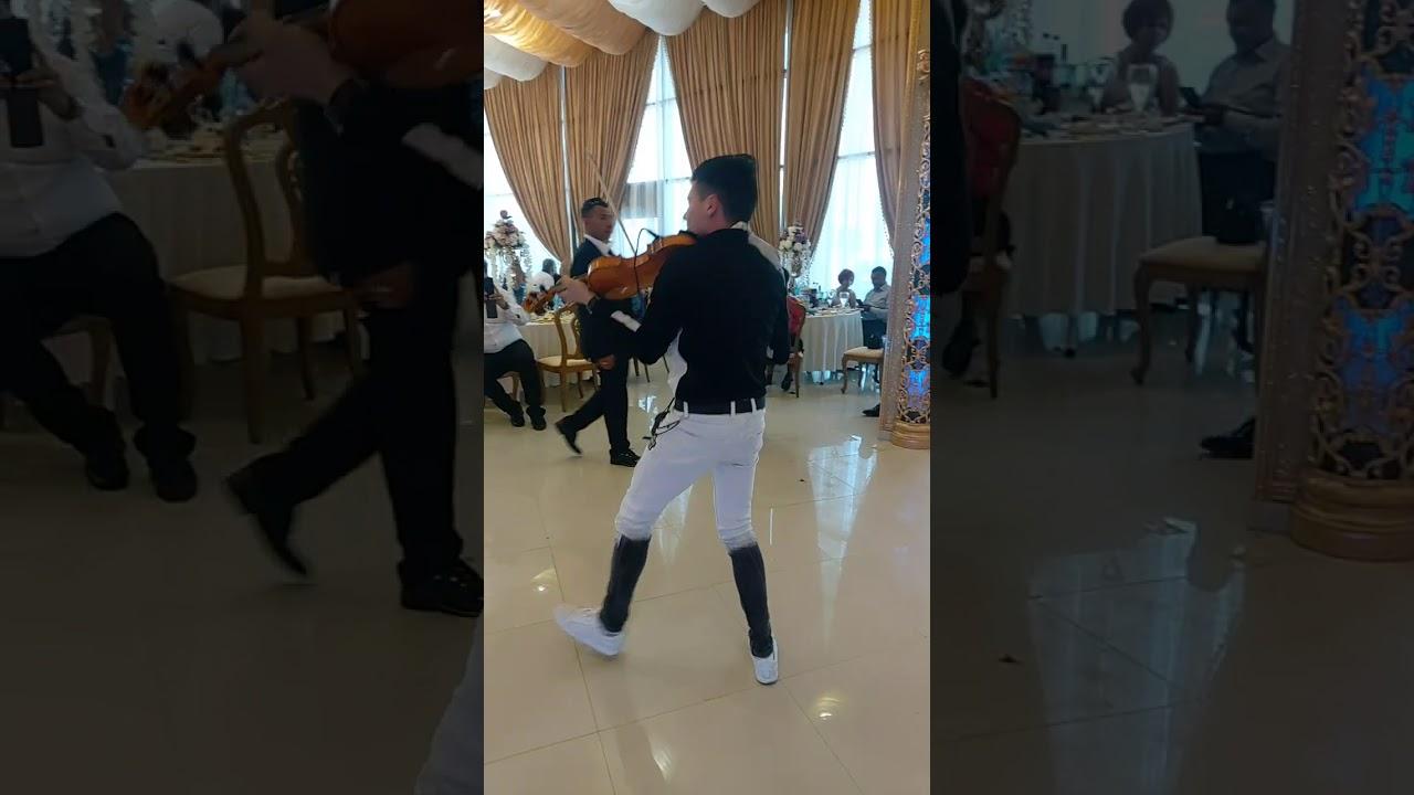 Alberto violin Ork.Universal Bend Struja 2021