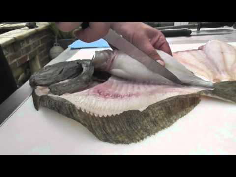 Passionate About Fish - How To Fillet A Wild Turbot