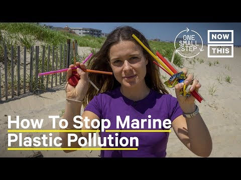 How Do We Fight Marine Plastic Pollution? #WorldOceansDay | One Small Step | NowThis