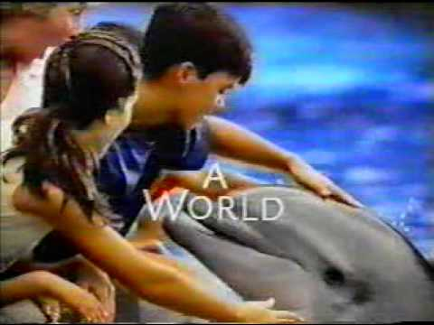 Marineland Theme 1998   Doovi