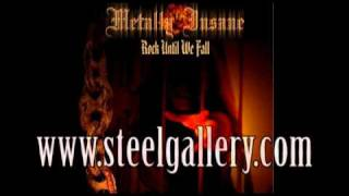 Metally Insane - Rock Until We Fall (Steel Gallery Records) 2010