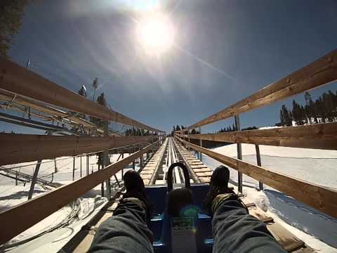 Gold Runner Alpine Rollercoaster- Peak 8- Breckenridge Colorado