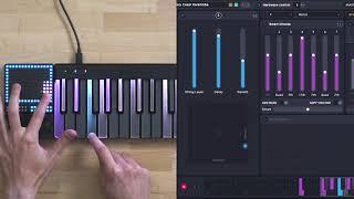 LUMI Keys & BLOCKS X ROLI Studio Player: Compose And Produce Faster