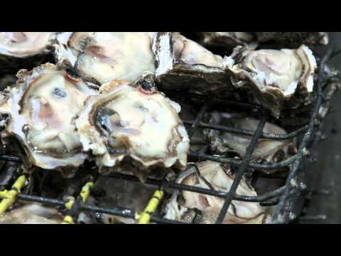 WaGrown Shellfish S2E4: Shellfish Processing With Taylor Shellfish Farms