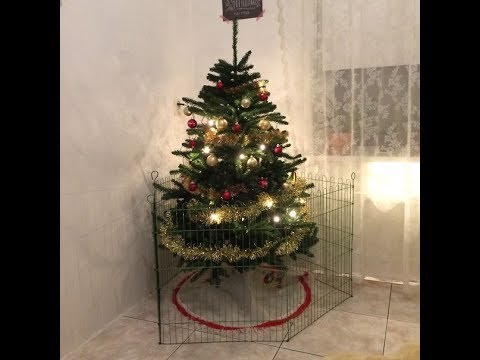 Genius People Who Found A Way To Protect Their Christmas Trees From Cats  And Dogs pt 3 - Genius People Who Found A Way To Protect Their Christmas Trees From