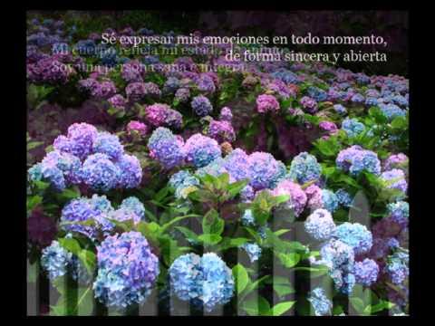 Video con afirmaciones, imágenes de jardines y música para meditar