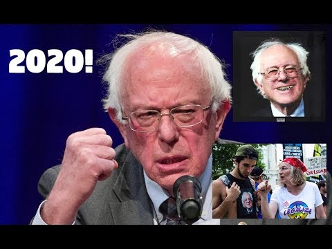 Bernie Sanders Announces His 2020 Presidential Run! Reaction From 2016 Bernie Supporter.