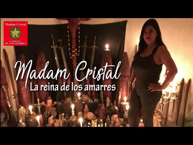 Curriculum, estudios, conferencias, eventos Madam Cristal
