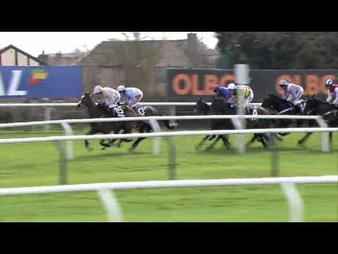 2014 Sky Bet Supreme Novices Hurdle - Vautour - Racing UK