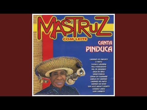 CARIMBO O CD REI DO BAIXAR PINDUCA