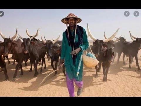 Fixing The Fulani Herdsmen Problem