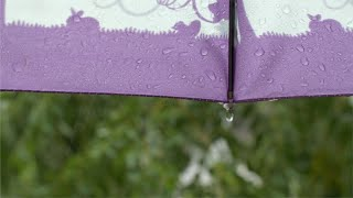 Drops of rainwater hitting the purple umbrella