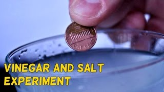 Vinegar And Salt Experiment