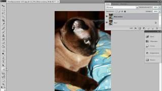 Оформление фотографий, векторная графика в Photoshop (31/40)
