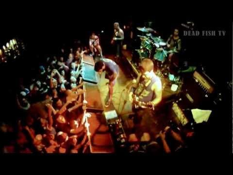 Dead Fish No Lançamento Do DVD 20 Anos - Contra Todos / Sua Bandeira / Canção Menor (19/08)