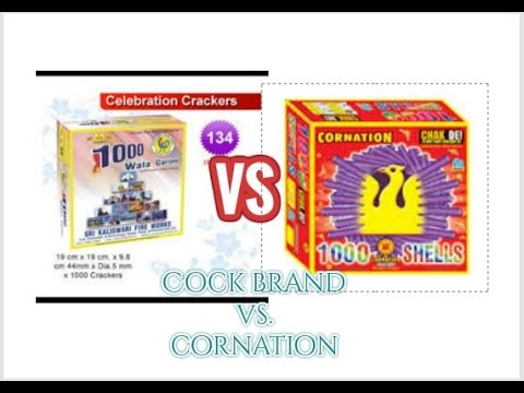Cock vs cornation 1000 wala Garland