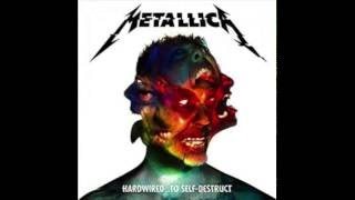 Metallica   Spit Out The Bone