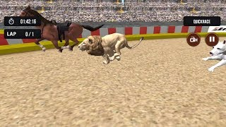 Wild Lion Racing Fever : Animal Race #4 | Lion Hunt Horse - Dishoomgameplay