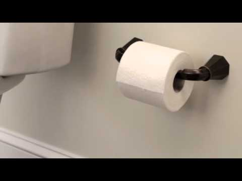 Moen Pivoting Paper Holder