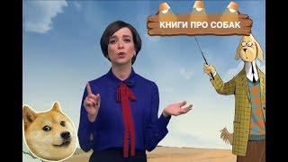 МАРТЫШКА: Книги про собак. Эфир на телеканале 78.ru