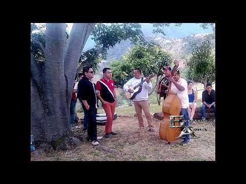 LUNA LLENA - Lalo Avila ft Los Armadillos