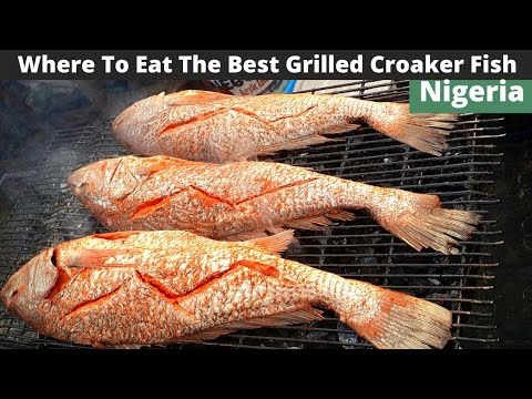 Download NIGERIAN STREET FOOD TOUR | HOW TO MAKE BARBEQUE FISH NIGERIAN STYLE | GRILLED CROACKER FISH