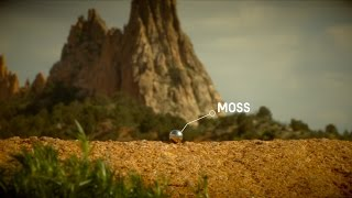 MOSS: We Come in Pieces