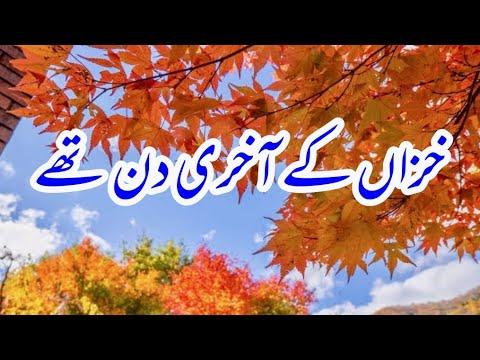 Khizan K Akhri Din Thy Best Sad Urdu Poetry #rjaqib #urdupoetry