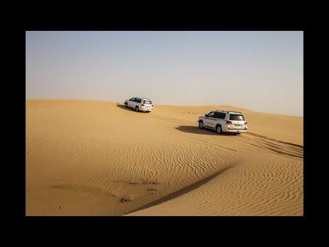 Desert Safari Dubai | Dune Bashing | BBQ Dinner | Falcon Experience | Arabic Music