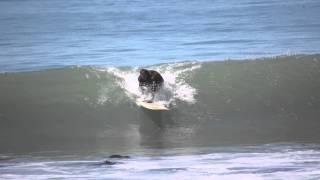 Lost Coast 2012 2
