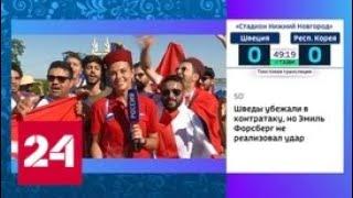 Волгоград примет первый свой матч чемпионата мира по футболу - Россия 24