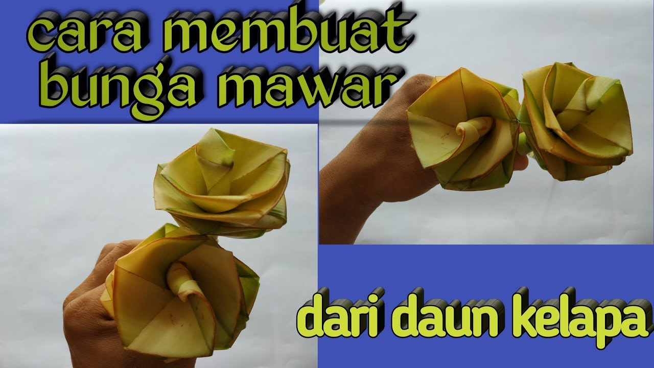 Ide Kreatif Cara Membuat Bunga Mawar Dari Daun Kelapa Youtube