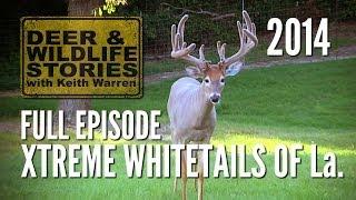 Xtreme Whitetails of Louisiana - Whitetails at the Xtreme